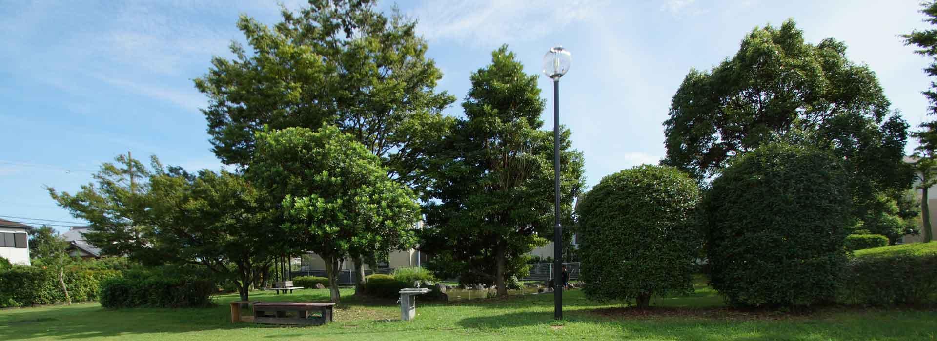 公園・学校・公共施設など広範囲の緑地管理・樹木管理はお任せください
