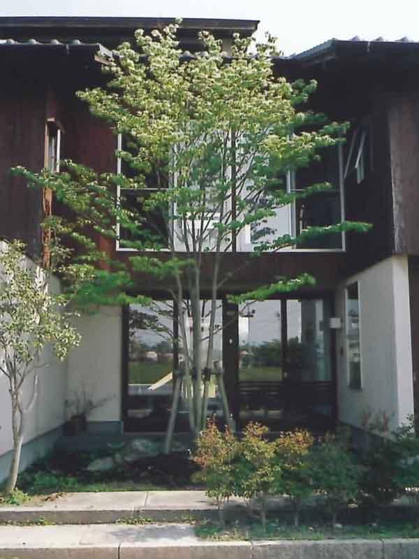 お客様の理想のデザインのお庭を造ります。